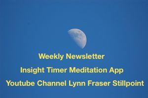 Newsletter, Meditation, Youtube info.